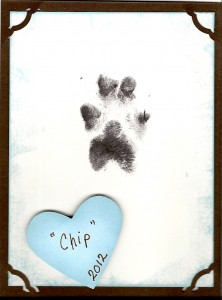 Chip's Paw Print